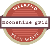 moonshine, 3 functional transportation devices (made of junk)